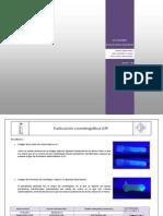 Informe Purificacion Comatografica M1 LACC2
