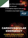 Cardiovascular Emergency