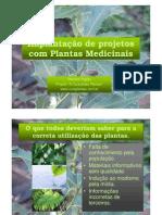 Implantação de projetos com Plantas Medicinais