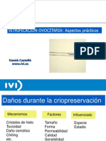 Damia Castelló - Vitrificación Ovocitaria - II Simposio Reproducción Asistida Quirón