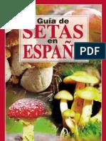 GUIA DE SETAS EN ESPAÑA