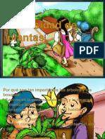 Diversidad de Plantas 2