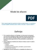 Model de Afacere13
