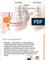 spina bifida presentation