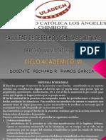 DERECHO REAL VI.pptx