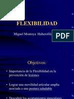 Flexibilidad l