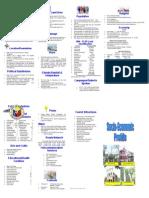 Bago City Socio-economic Profile Updated