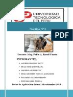 3.trabajo completo de adm. publica-prctica 3.doc