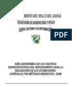 Guía_Agronómica_Cultivos_Representativos_del_Departamento_del_Valle_del_Cauca