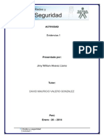 Evidencias 1 Redes y Modelo OSI Sena