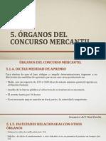 PRESENTACIÓN ORGANOS DEL CONCURSO MERCANTIL-CONCHITA