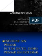 Anatomia de Aparato Digestivo