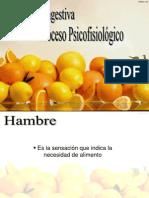 Diapositivas Hambre