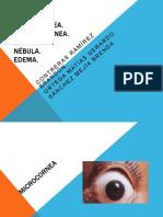 Expo cornea.pptx