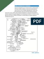 General Information Andaman