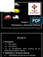 T_2_Percepcion._Habilidades_y_destrezas_sin_ocultar.ppt