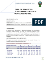 PERFIL DE PROYECTO-TERMINADO.docx