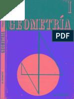 geometría i, dr. antonio paz sordía.pdf
