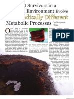 Discovering Dual Cyanobacteria Metabolism