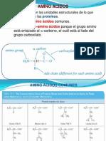 Bioquimica Introduccion II Proteinas Enzimas