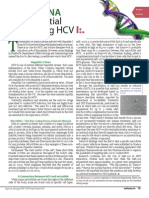 Small RNA, Big Potential for Treating HCV