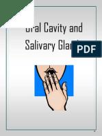 32 Oral Cavity