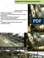 Goat Farming (1)