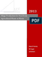 Silage Production for Feed