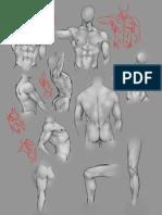 Anatomy Practice by Moni158-d3kfwa9