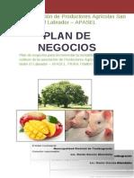 Plan de Negocios-Apasel