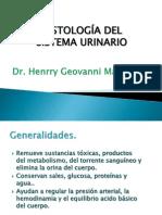 7 Histologia de Sistema Urinario Publicacion