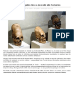 DNA de Cranios Alongados Revela Que No So Humanos