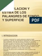 MANIPULACION Y ESTIBA DE LOS PALANGRES DE FONDO Y SUPERFICIE.ppt