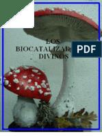 Los biocatalizadores divinos