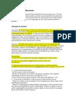 APA-Norm + Voorbeeld
