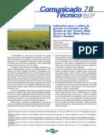 Indicações para o cultivo de girassol