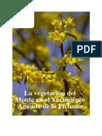 La Vegetacion Del Monte en El Yacimiento Aguada de La Pichana