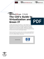 Chief Info Officers Guide to Green IT