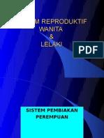 Sistem Reproduktif a(Lelaki&Pompuan)A