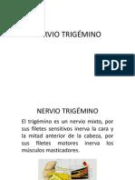 Nervios Trigemino y Facial