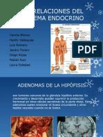 Correlaciones Del Sistema Endocrino