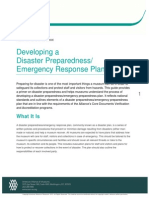 Developing a Disaster plan.pdf