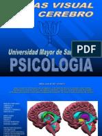 Atlas Del Cerebro