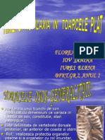 Toracele Plat(Infundat)