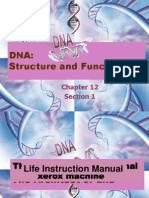 DNA Structure + Function
