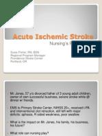 12.3.09 Nurses Pivotal Role in AIS