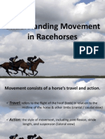 Lecture 3 - Movement in Racehorses.pdf
