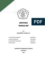 BIOFISIKA KELOMPOK 4 (BIOKALOR)