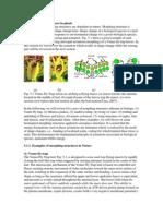 Ver IMPOrtant jawa.pdf