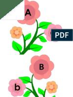 Abjad (Bunga)